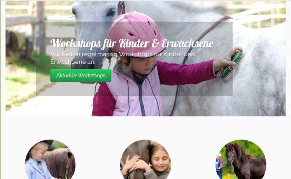 Webseite Ponyschule AMIGOS