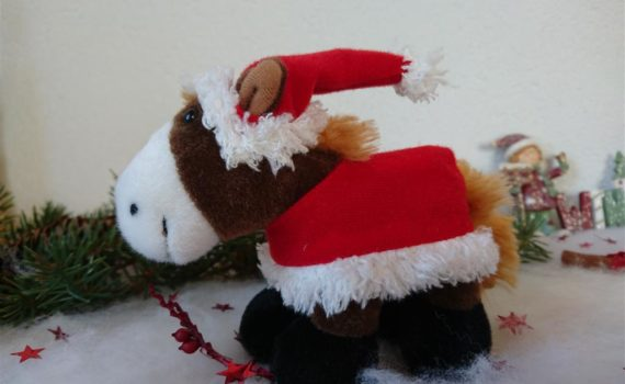 Pony-AMIGOS